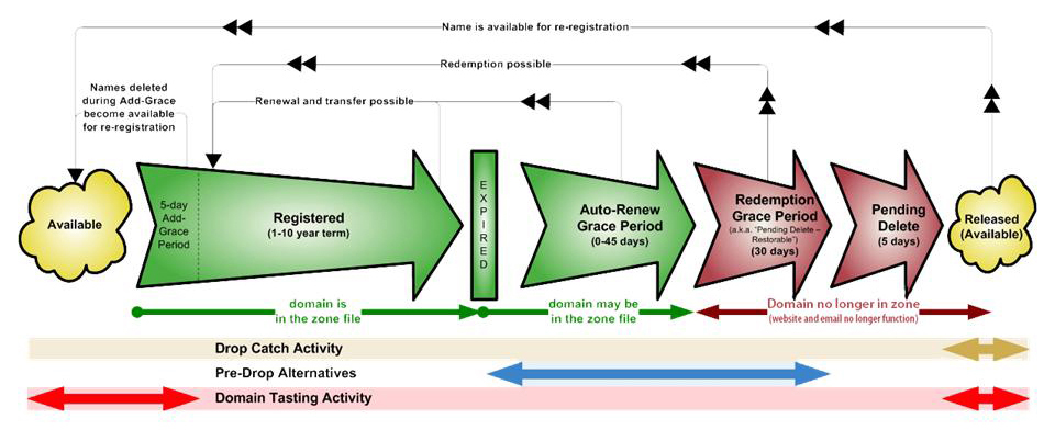 Domain name lifecycle process