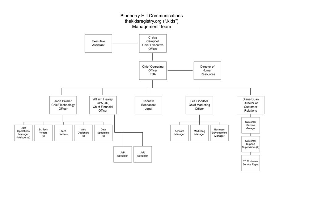 Non Profit Organizational Chart. Wallet Cards And Brochures; 27